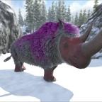 Valentins-Rhino